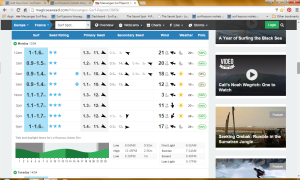 perfect surf report