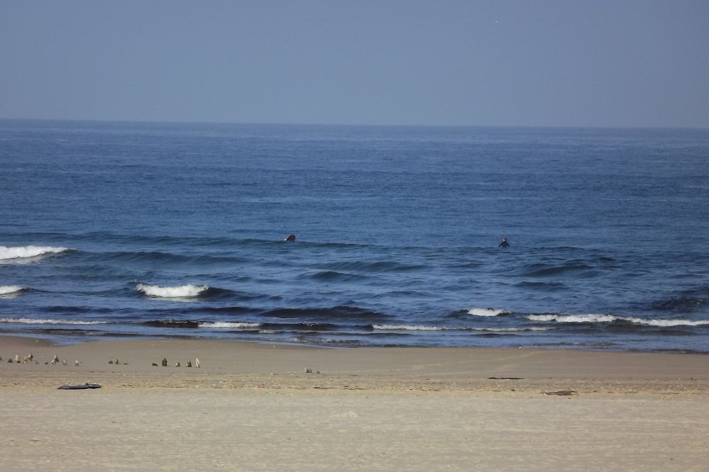 private surf lessons in hossegor (2)