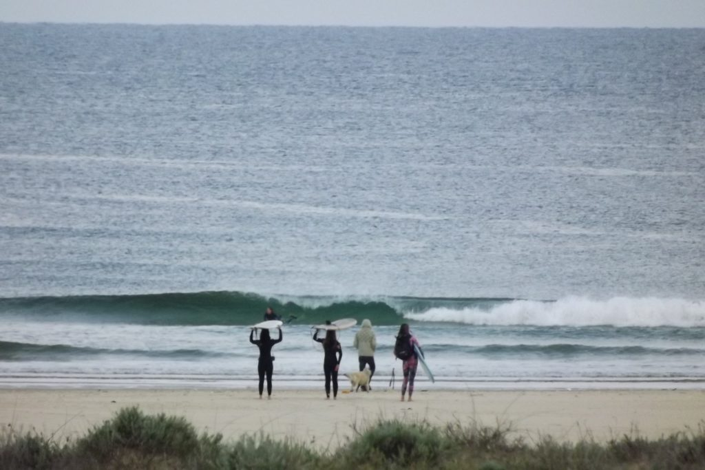 Surfing Hossegor and Moliets This Month
